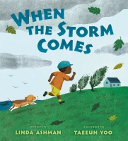 Jacket Image For: When the Storm Comes