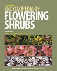 Jacket image for The Timber Press Encyclopedia of Flowering Shrubs