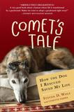 Jacket Image For: Comet's Tale