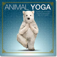 Jacket image for Animal Yoga