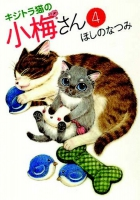 Jacket Image For: Plum Crazy! Tales of a Tiger-Striped Cat Vol. 4