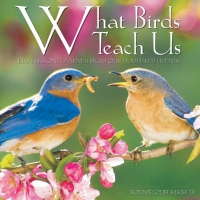 Jacket Image For: What Birds Teach Us